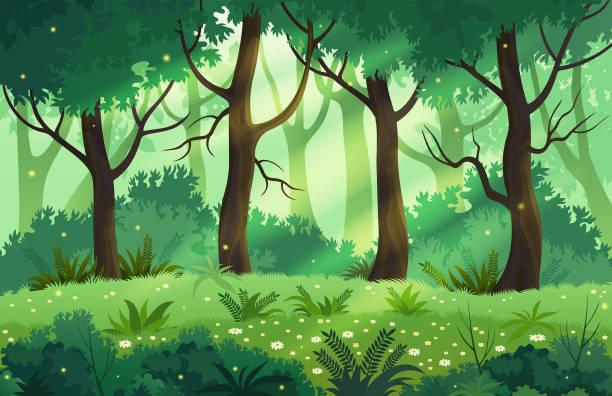 La forêt de Alain
